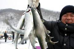 Funny: Ice Fishing Festival in South Korea (14 Pics)