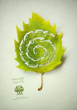 """Every leaf traps CO2"""