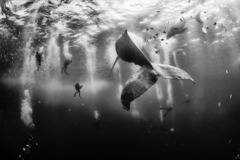 National Geographic Traveler Photo Contest 2015
